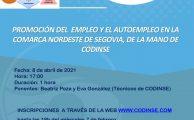 Webinar sobre promoción de empleo y autoempleo en la Comarca Nordeste de Segovia