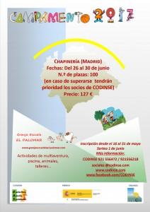CartelCampamento_17